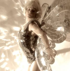 Mirrored Butterflies